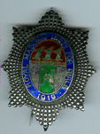 TH271 Royal Masonic Institution for Girls 1919 Stewards jewel-0